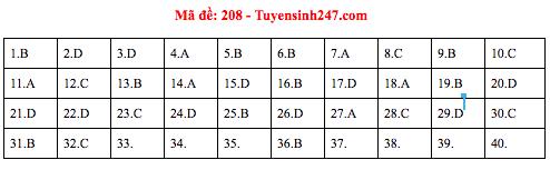 Gợi ý đáp án thi môn Vật lý THPT Quốc gia 2019 tất cả các mã đề - Ảnh 5.