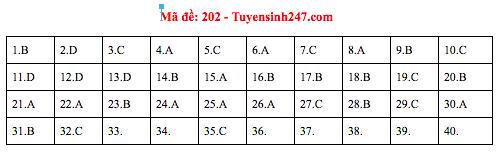Gợi ý đáp án thi môn Vật lý THPT Quốc gia 2019 tất cả các mã đề - Ảnh 4.