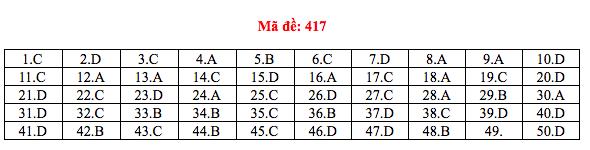 Cập nhật gợi ý đáp án môn tiếng Anh THPT Quốc gia 2019 tất cả 24 mã đề - Ảnh 4.