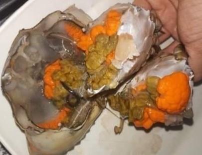 Thịt, gạch cua Cà Mau nhiều, ngon (ảnh Nhật Hồ)