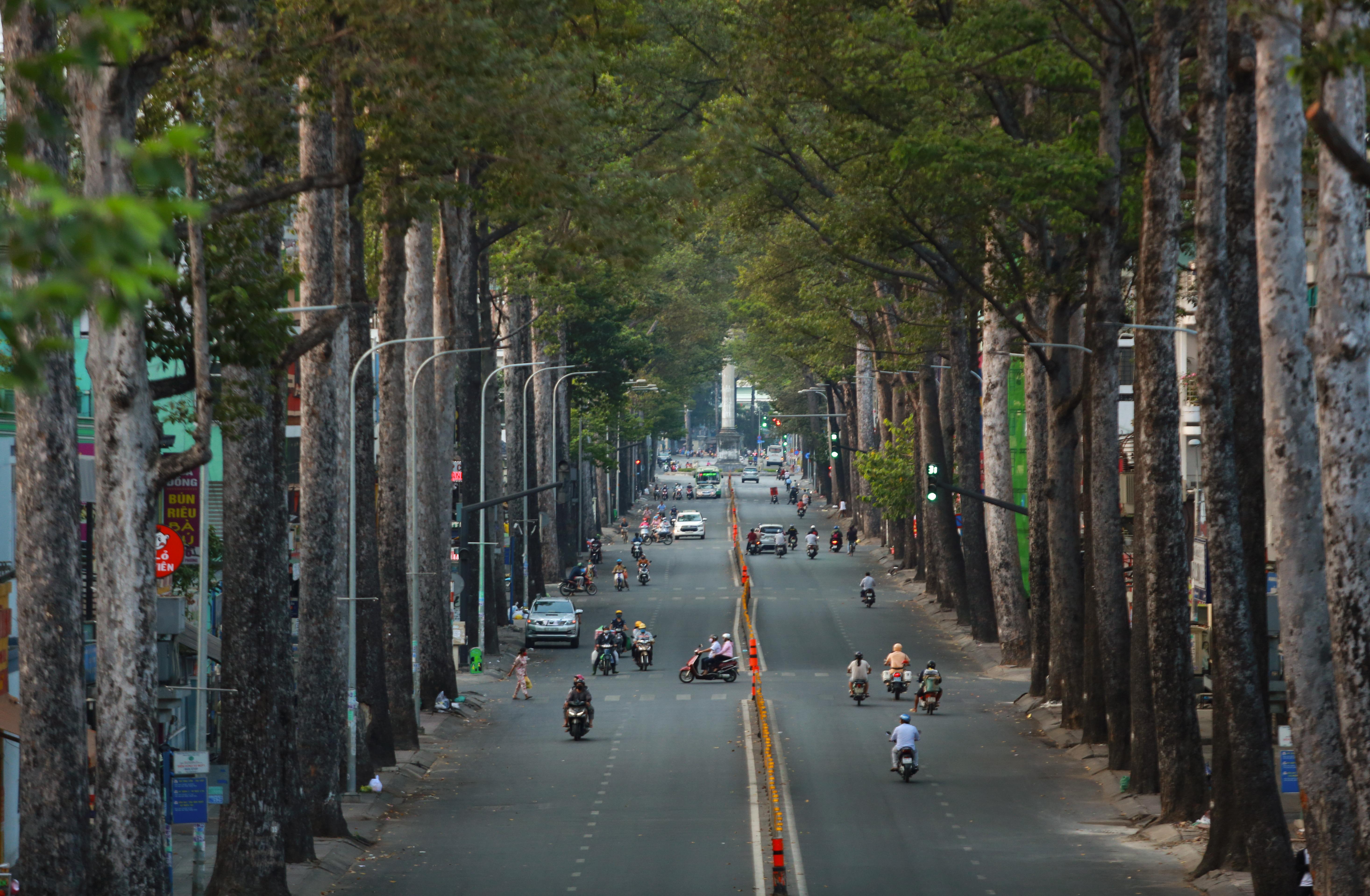 Ngắm Sài Gòn đẹp và yên bình trước thời điểm cách ly toàn xã hội trong 15 ngày - Ảnh 15.