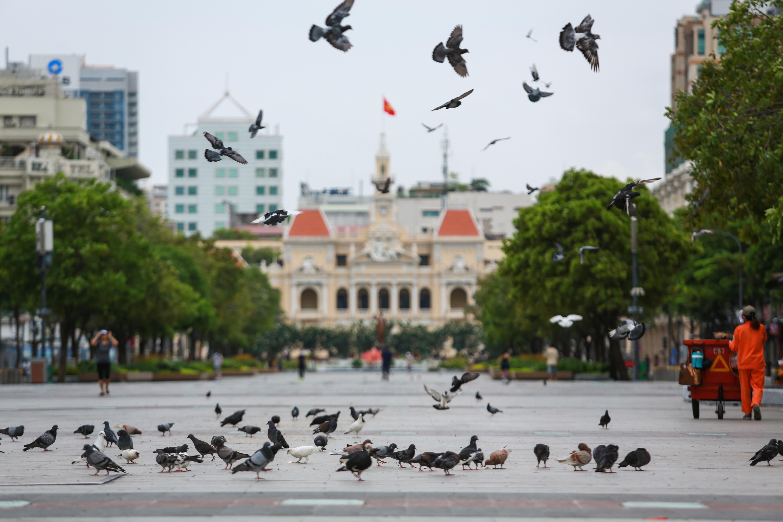 Ngắm Sài Gòn đẹp và yên bình trước thời điểm cách ly toàn xã hội trong 15 ngày - Ảnh 1.