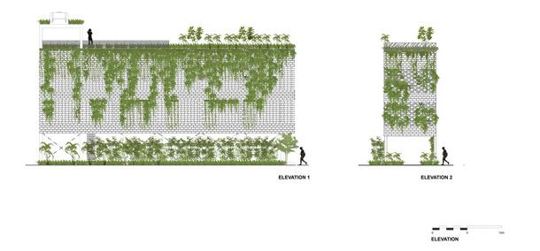 Vườn treo tại Đà Nẵng được cải tạo từ căn nhà xây dang dở xuất hiện long lanh trên báo Mỹ - Ảnh 13.