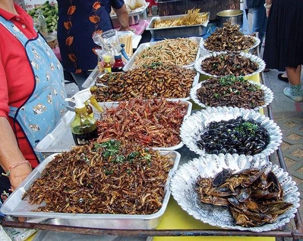 Kết quả hình ảnh cho chợ Côn Trùng
