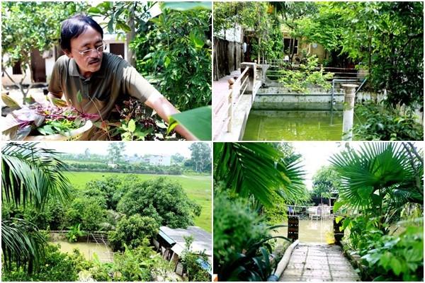 Mảnh đất 10.000m2 phủ bóng cây xanh của gia đình nghệ sĩ Giang Còi