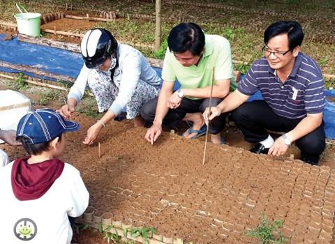 Vườn ươm cây sâm Ngọc Linh được di thực sang huyện Tây Giang, Quảng Nam.