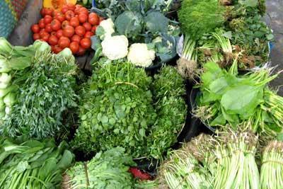 Rau quả đều được phun chất kích thích tăng trưởng và diệt sâu bọ, thậm chí là cả rau quả chính vụ thì cũng phun. Ảnh minh họa.