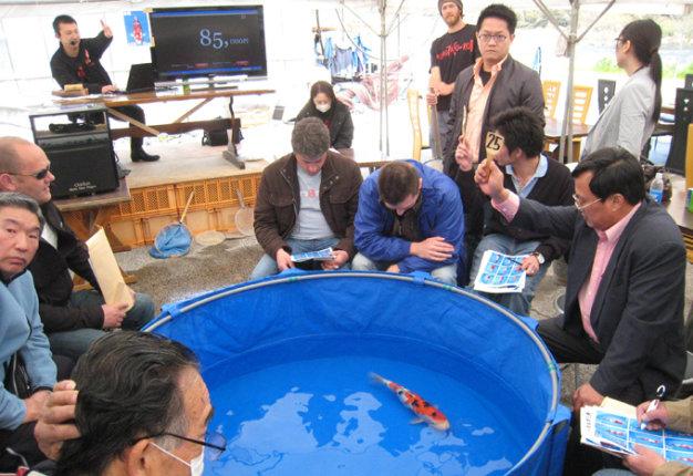 Ông Dũng (cầm bảng số 25) ở phiên đấu giá cá koi tại Nhật Bản - Ảnh: Lê Thanh
