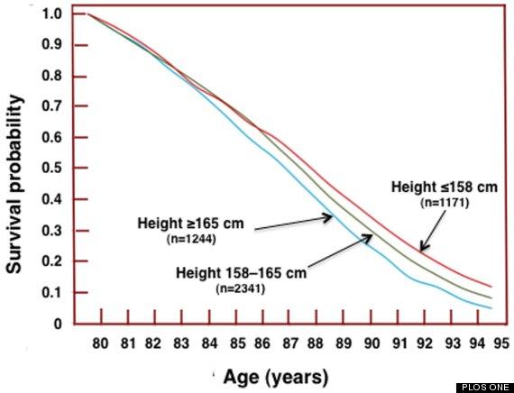 Biểu đồ chiều cao và tuổi thọ