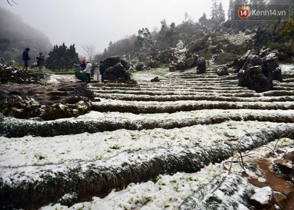 Tuyết phủ trắng xóa tại Sapa