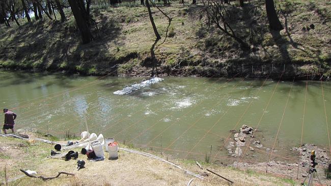 Một đoạn của con sông Condamine dài hơn 200km ở Úc.