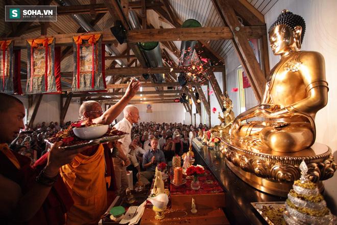 Phật giáo đang dần khẳng định chỗ đứng ở lục địa già.