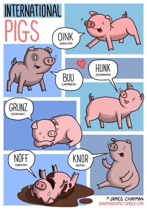 Tiếng kêu của lợn ở các nước