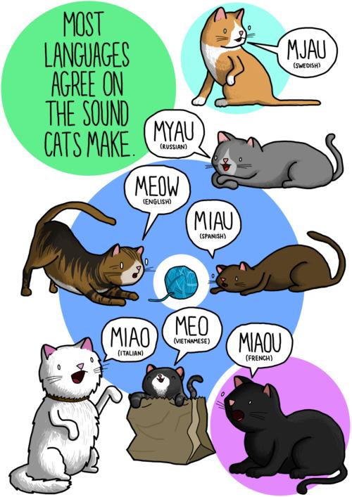 Tiếng kêu của mèo