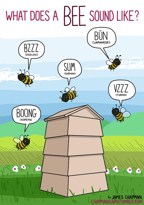 Bạn nghe thấy ong kêu như thế nào?