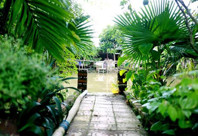 Toàn cảnh khu nhà vườn của nghệ sĩ Giang Còi với đủ vườn cây, ao cá