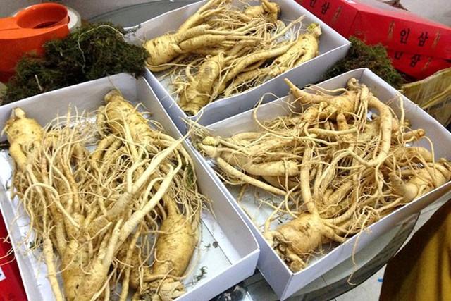 Những hộp sâm được cho là sâm tươi xách tay từ Hàn Quốc có giá 1-4 triệu/kg, mua lẻ giá 800.000 đồng mỗi củ. Ảnh: NVCC.