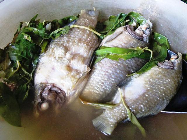 Hình ảnh Cá diếc và những bài thuốc tuyệt vời cho sức khỏe số 2