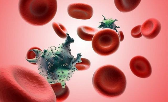 Ung thư máu ở người trưởng thành có tỷ lệ cao.