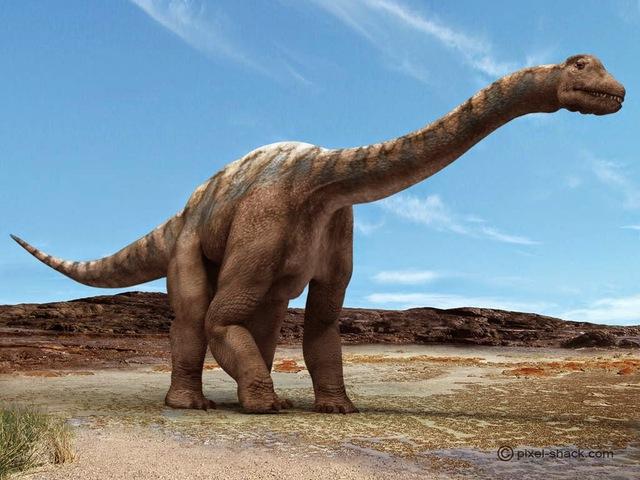 Khủng long ăn cỏ Argentinosaurus - Loài này cao từ 21 m đến gần 38 m với trọng lượng 100 tấn.