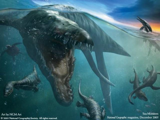 Tiếp đó, những mảnh xương hóa thạch khác tiếp tục được tìm thấy sau lớp  băng. Hai mẫu vật này đã cho giới khoa học cái nhìn tổng quát hơn.