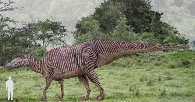 Khủng long ăn cỏ Shantungosaurus - Chúng cao gần 17 m và nặng khoảng 23 tấn
