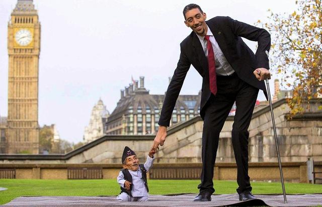 Người lùn và cao nhất gặp nhau