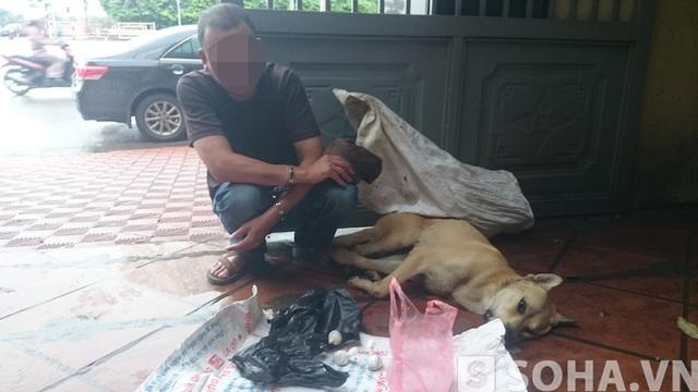 Đối tượng Dũng không thể giải thích về việc chú chó này bị chết bất thường.