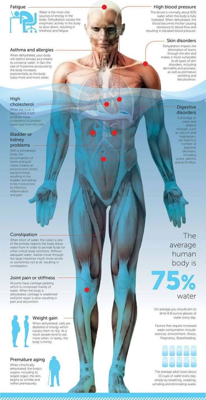 Hơn 70 % cơ thể người là nước. Ảnh minh họa.