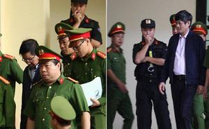 Căn phòng 'lạ' treo biển tên cựu tướng Nguyễn Thanh Hóa chỉ trong 1 tháng - ảnh 4