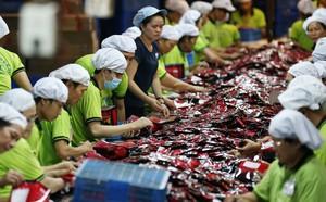 Forbes: Việt Nam sẽ hưởng lợi từ cuộc chiến thương mại Mỹ-Trung