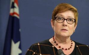 Leo thang Syria khiến Australia chỉ còn đủ nhiêu liệu cho 20 ngày? - ảnh 1