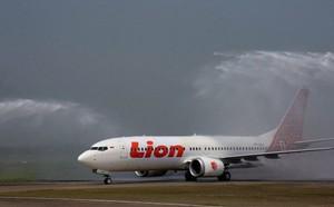 Thảm họa rơi máy bay tại Indonesia: Boeing giấu thông tin về máy bay 737 MAX 8? - ảnh 1