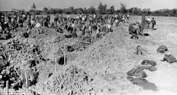 Các tù binh Đức đào huyệt để chôn các binh sĩ quân Đồng minh tử trận ở r Colleville-sur-Mer.