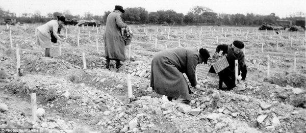 Những người dân cắm hoa trên những ngôi mộ tạm của các binh sĩ quân Đồng minh.