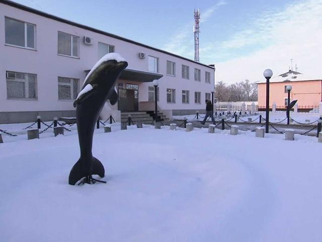 Nhà tù Black Dolphin (Cá heo đen) của Nga nằm gần khu vực biên giới với Kazakhstan. Một bức tượng cá heo đen được xây dựng bởi chính các phạm nhân ở trước nhà tù.