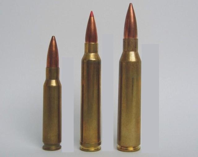3 trong số các loại đạn cho MSR, từ trái qua 7.62x51mm Winchester, &.62x67mm, 8.6x69mm