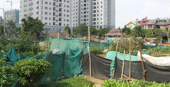 Lên quận, biệt thự Nam Từ Liêm 'cố thủ' 100 triệu/m2