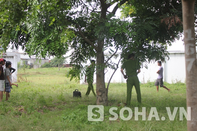 TP.HCM: Kinh hoàng phát hiện xác chết trên cành cây