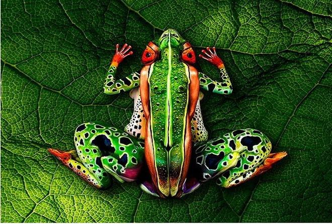 Choáng với bức tranh vẽ ếch cực chất bằng bodypainting