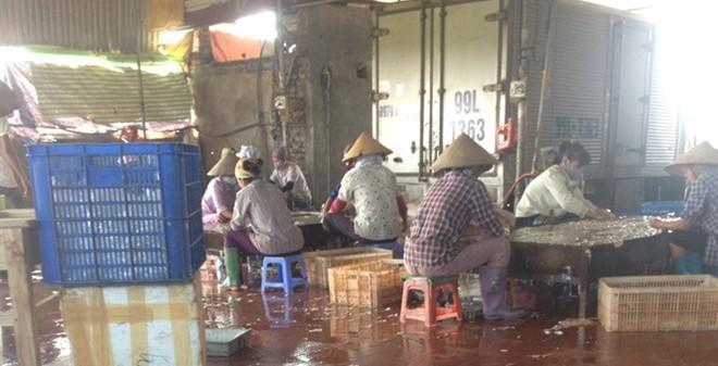 Nôn thốc trong lò luyện nội tạng lợn ở Bắc Ninh