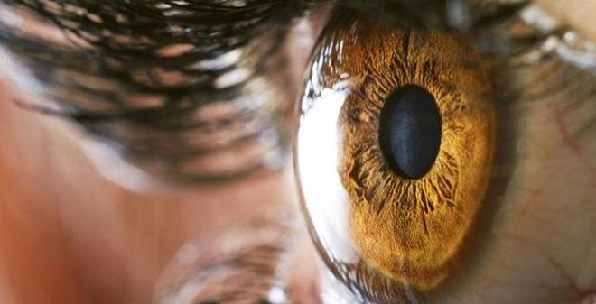 Đi tìm giới hạn đáng kinh ngạc của đôi mắt con người