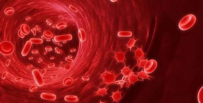 Trắc nghiệm 5 phút: Bạn có nguy cơ mắc bệnh ung thư không?