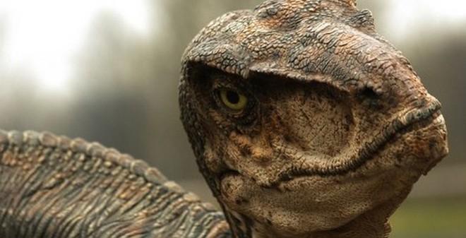 [Fun fact] 10 sự thật không ngờ về loài khủng long