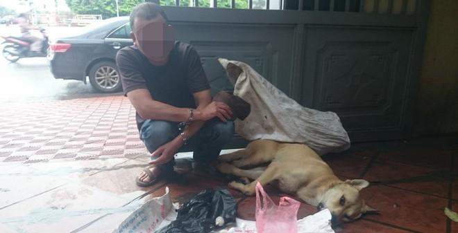 Tên trộm khóc nức nở bên chú chó becgie sùi bọt mép