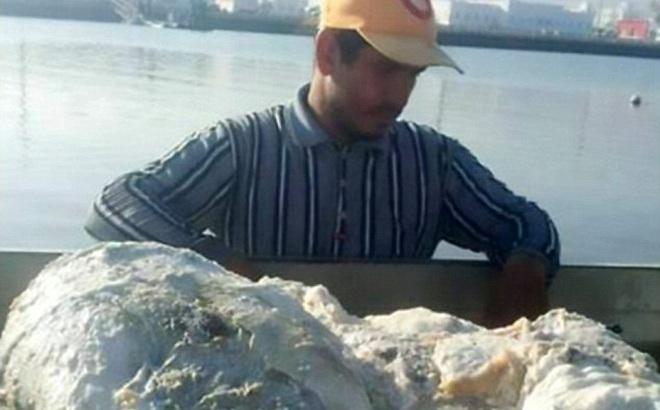 """Quăng lưới đánh cá, người ngư dân may mắn vớ được """"báu vật"""" nặng 60kg, trị giá 57 tỉ đồng"""