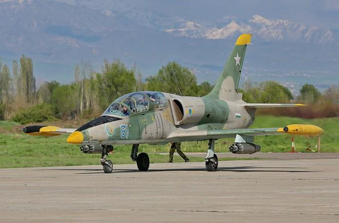 Khả năng chiến đấu của máy bay huấn luyện L-39 Việt Nam - Ảnh 2.