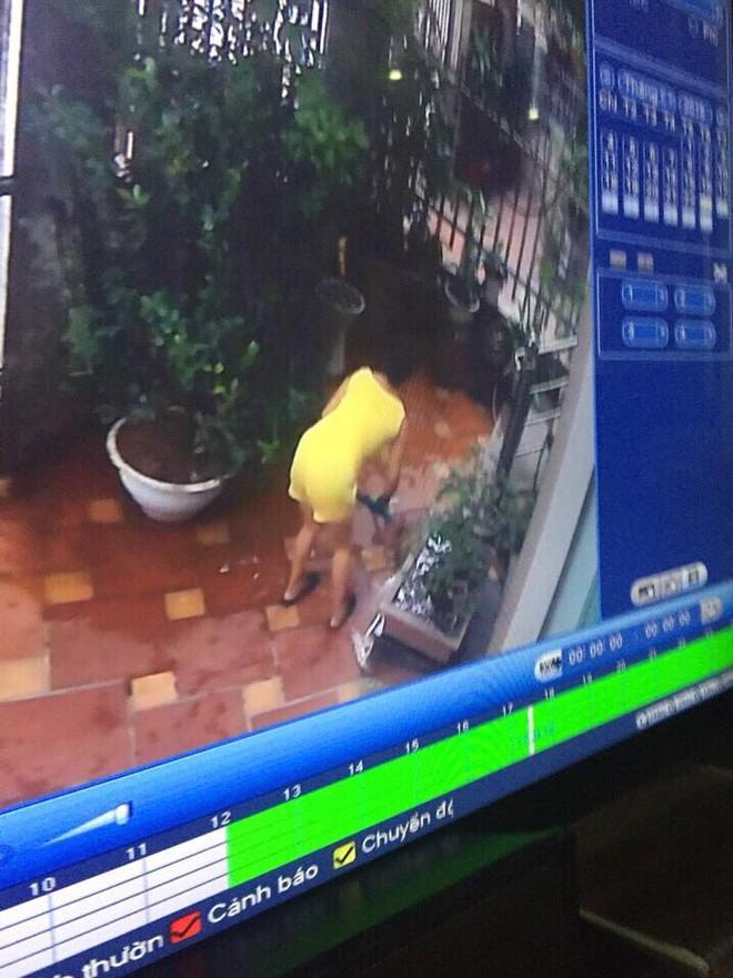 Người giúp việc gây phẫn nộ khi giết chết 2 chú chó của chủ nhà - Ảnh 2.