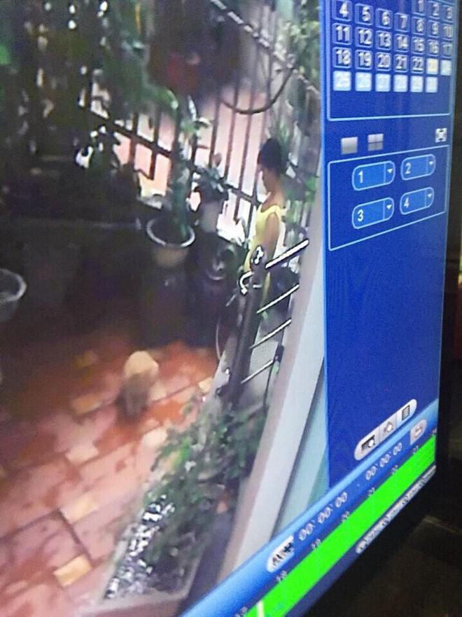 Người giúp việc gây phẫn nộ khi giết chết 2 chú chó của chủ nhà - Ảnh 4.