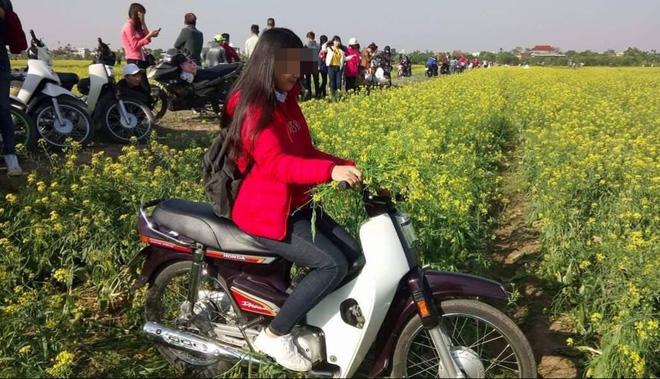 Ngày hôm nay, cả vườn hoa cải phải khóc ròng vì cô gái áo đỏ này - Ảnh 1.